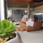 Desert Wonder (couch)